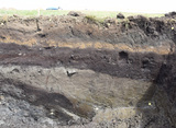 Horsens Soil Layers