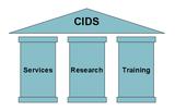CIDS-pillars
