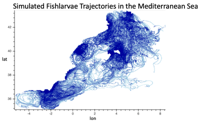 Fish Larvae Trajectories in the Mediterranean Sea